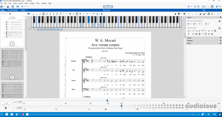 Capella-software Capella v8.0.10.2 WiN