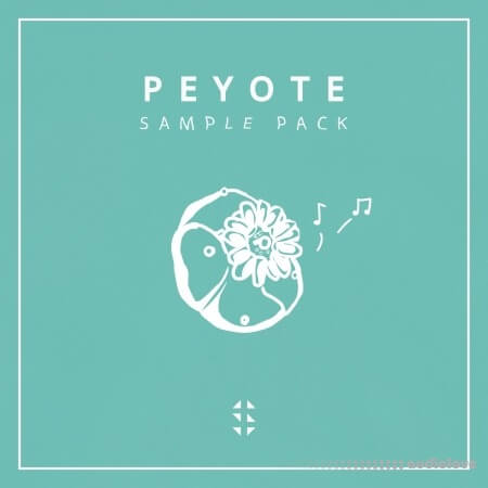 Samplified Peyote Sample Pack WAV Synth Presets