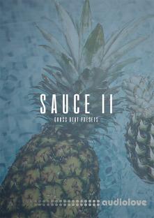 The Kit Plug Sauce II (Gross Beat Presets)