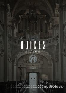 The Kit Plug Voices (Vocal Kit)