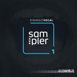 Diginoiz Vocal Sampler