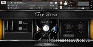 Perfect Kits Trap Brass XL