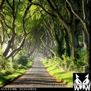 West Wolf Nature Sounds