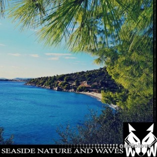 West Wolf Seaside Nature and Waves