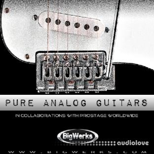 BigWerks Pure Analog Guitars
