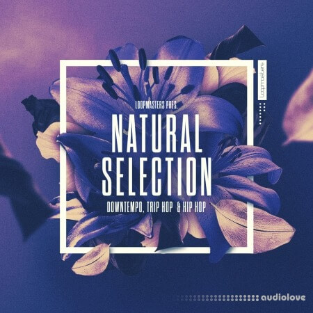Loopmasters Natural Selection MULTiFORMAT