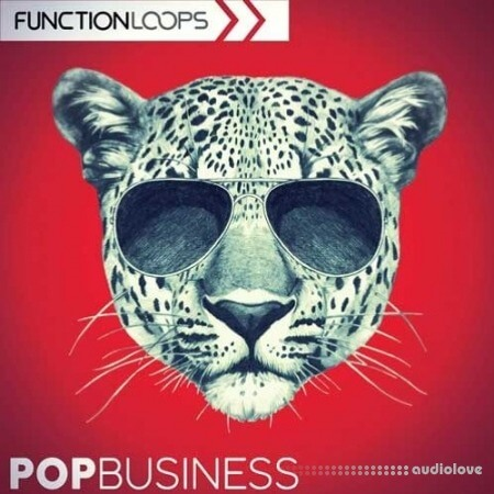 Function Loops Pop Business WAV MiDi Synth Presets