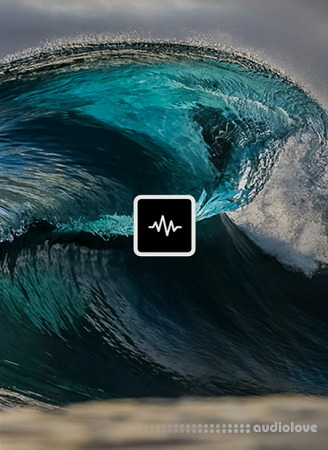 WavSupply TouchOfTrent Tsunami Synth Presets