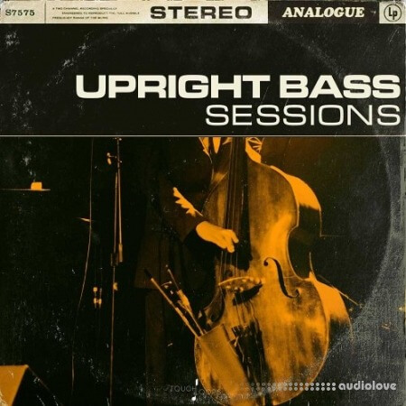 Touch Loops Upright Bass Sessions WAV