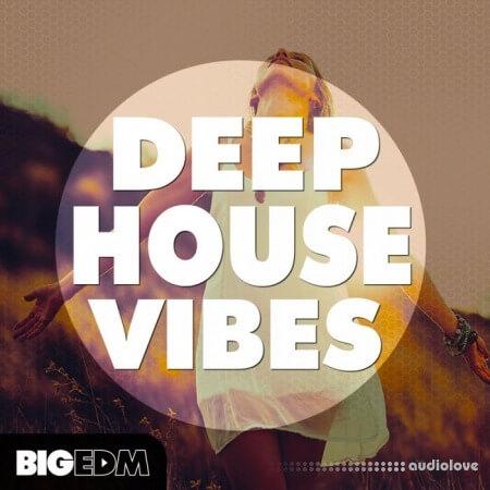 Big EDM Deep House Vibes WAV Synth Presets