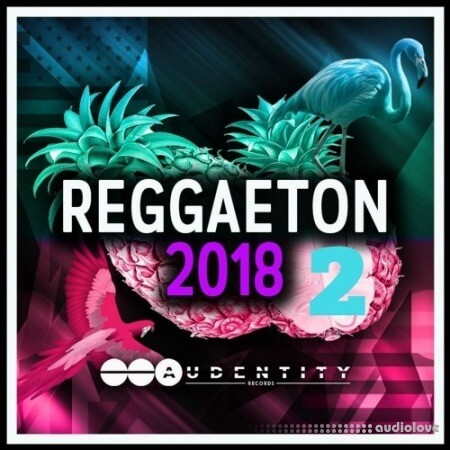 Audentity Records Reggaeton 2018 Vol.2 WAV Synth Presets MiDi