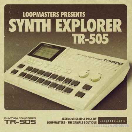 Loopmasters Synth Explorer TR505 MULTiFORMAT