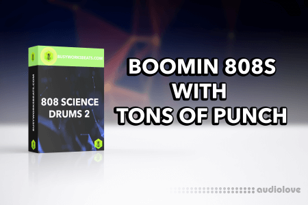 Busy Works Beats 808 Science Drums Vol.2 WAV