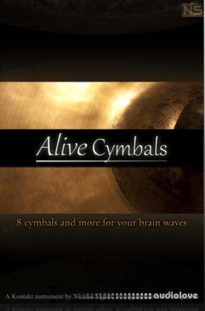 Sampleism Nicolas Signat Alive Cymbals v1.5 KONTAKT
