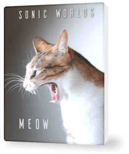 Sonic Worlds Meow (incl. Cat sound pack)