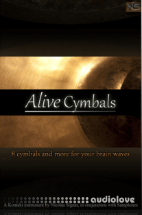 Sampleism Nicolas Signat Alive Cymbals