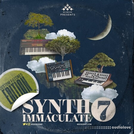 MSXII Audio Synth Immaculate 7 MULTiFORMAT