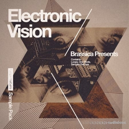 Loopmasters Brassica Electronic Vision WAV REX