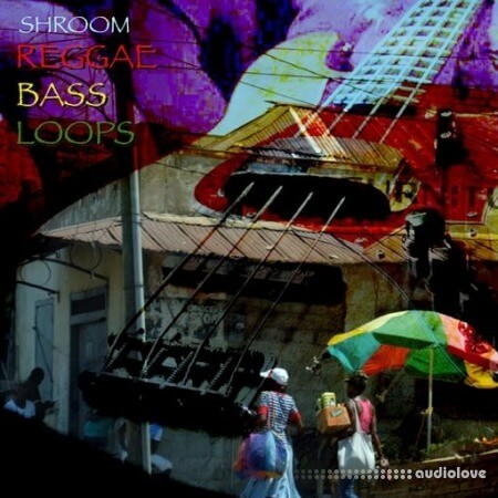 Shroom Reggae Bass Loops WAV