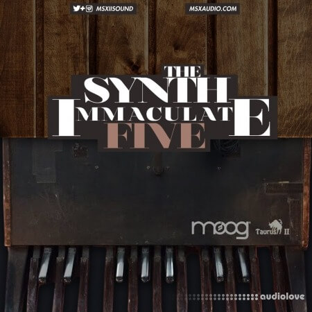 MSXII Sound The Synth Immaculate 5 WAV