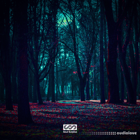 Soul Surplus Dark Forest Sample Pack WAV