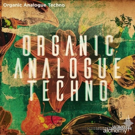 Wave Alchemy Organic Analogue Techno Ableton Live MULTiFORMAT