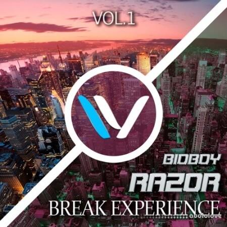 ProWaveStudio Break Experience Volume 1 Synth Presets