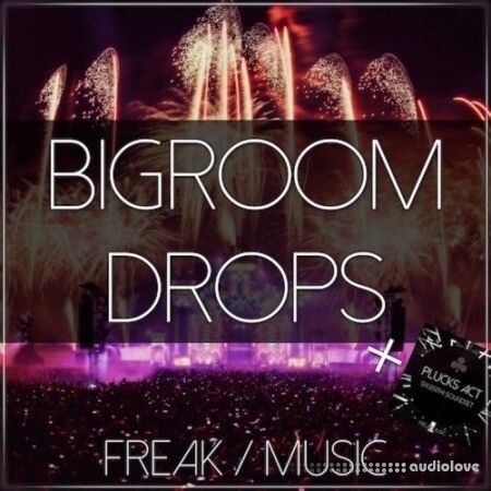 Freak Music Bigroom Drops WAV MiDi Synth Presets