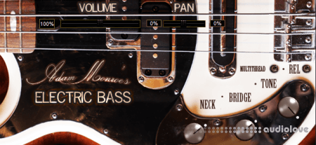 Adam Monroe Music Electric Bass WiN MacOSX