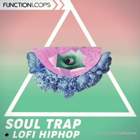Function Loops Soul Trap And Lo-Fi Hip Hop