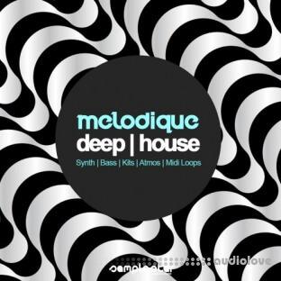 Samplestar Melodique Deep House