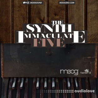 MSXII Sound The Synth Immaculate 5