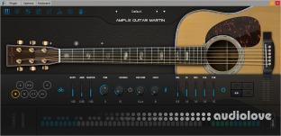 Ample Sound Guitar M
