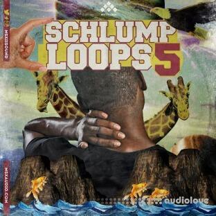 MSXII Schlump Loops 5