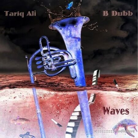 Tariq Ali x B Dubb - Waves (Loop Kit) WAV