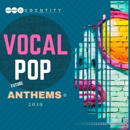 Audentity Records Vocal Pop Anthems 2019 WAV MiDi Synth Presets