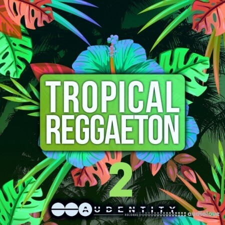 Audentity Records Tropical Reggaeton 2