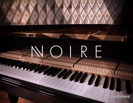 Native Instruments Noire v1.1.0 KONTAKT
