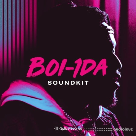 Splice Sounds Boi-1da Soundkit Bare Sounds for Your Headtop WAV