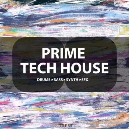 Little Bit Prime Tech House WAV