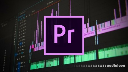 Udemy The Complete Adobe Premiere Pro Masterclass TUTORiAL