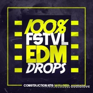 Mainroom Warehouse 100% FSTVL EDM Drops