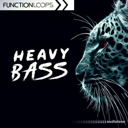 Function Loops Heavy Bass: Dubstep and Riddim WAV MiDi Synth Presets
