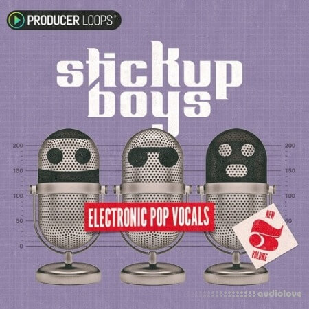 Producer Loops Stick Up Boys Electronic Pop Vocals Vol.3 WAV MiDi