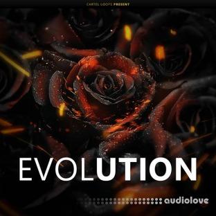 Cartel Loops Evolution