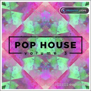Producer Loops Pop House Vol.3