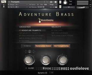 Musical Sampling Adventure Brass