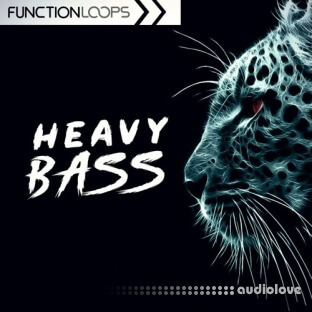 Function Loops Heavy Bass: Dubstep and Riddim