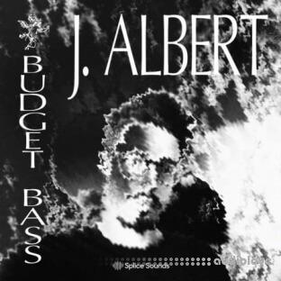 Splice Sounds J Albert Budget Bass