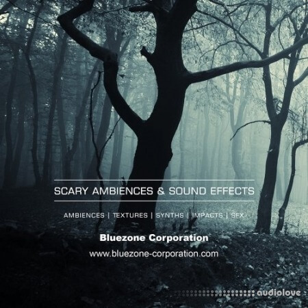 Bluezone Corporation Scary Ambiences and Sound Effects